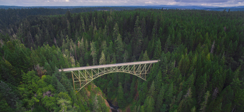 Bridge over pines like inference making in reading is how students' bridge the gap in connecting information across a text